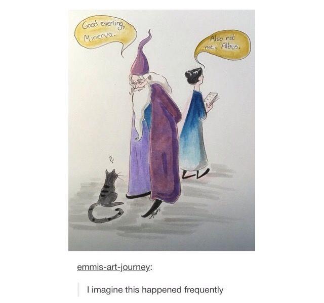 Dumbledore & McGonagall xD (headcanon accepted!)