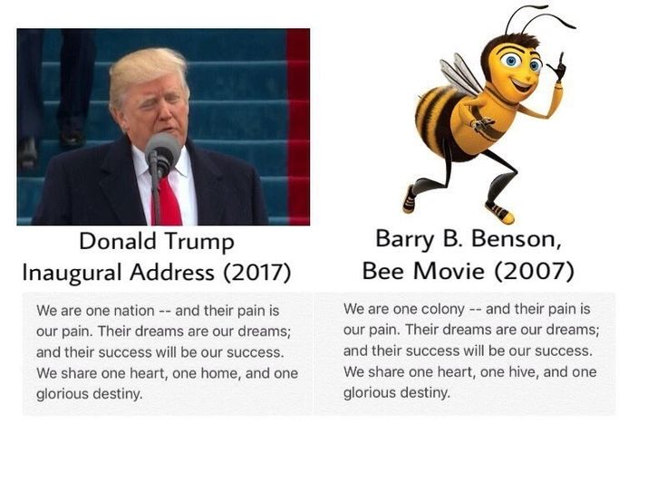 "No, Donald Trump Did Not Quote ""Bee Movie"" In His Inaugural Address - BuzzFeed News"
