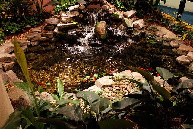 8 best images about indoor ponds on pinterest pond for Indoor koi pond designs