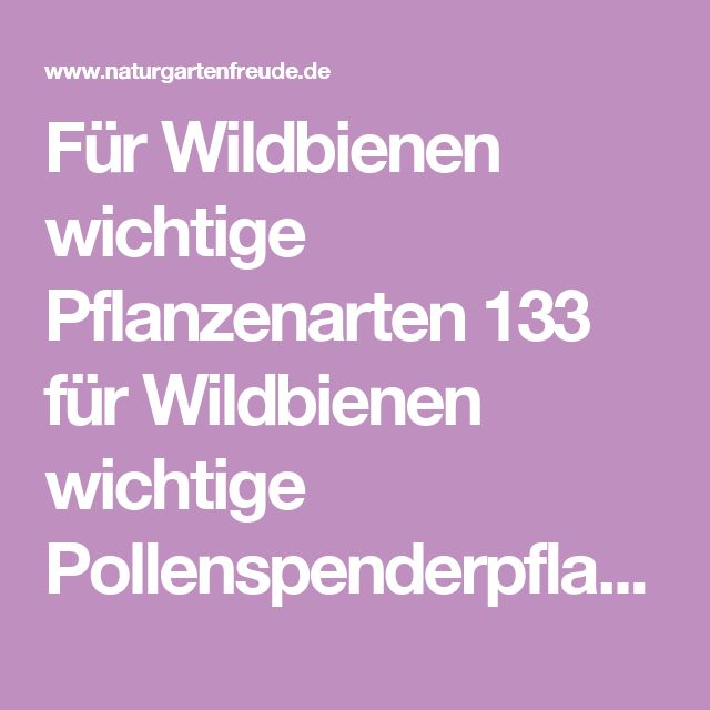 Für Wildbienen wichtige Pflanzenarten 133 für Wildbienen wichtige Pollenspenderpflanzen, 44 Arten speziell für Hummeln Wirtspflanzen für Wildbienen.pdf Adobe Acrobat Dokument 1.2 MB