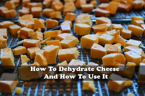 The best type of cheese to use for this task is farmhouse cheese or feta cheese. If you dehydrate cheese regularly, then you will have a source of food that will easily last for several months. Since you are making a dried cheese, then there are many awesome ways it can be used when preparing a meal. You can learn how to dehydrate cheese by reviewing information on joybileefarm.com here…