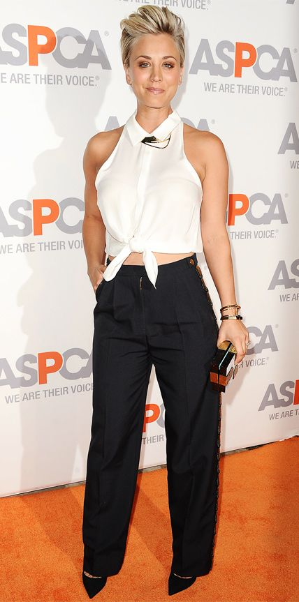 Kaley Cuoco-Sweeting made a sharp entrance at the ASPCA Compassion Awards in a sleeveless tie-front button-down that she smartly styled with wide-leg trousers, accessorizing with a gold jewelry, a metallic clutch, and black pumps.