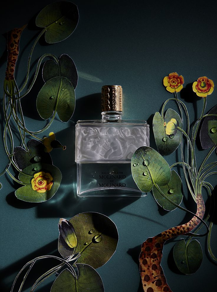 Still Life photography by Sarah Hogan — Art Direction #fashion #ambience #styling