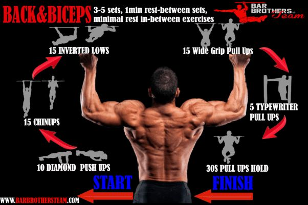 top biceps and back calisthenics workout plan