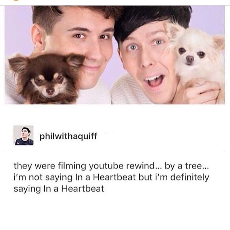 Ive honestly had the worst 2 days I wanna cry          #dan #phil #philly #danny #phan #phandom #phanpage #cute #lions #llamas #ibf #dontcrycraft #phillester #danielhowell #danisnotonfire #youtube #danandphilcrafts #protip #phanisreal #amazingphil #danandphilgames #tatinof #lgbt #lester #howell #proud #youtubers #freetheknee #nicerphandom