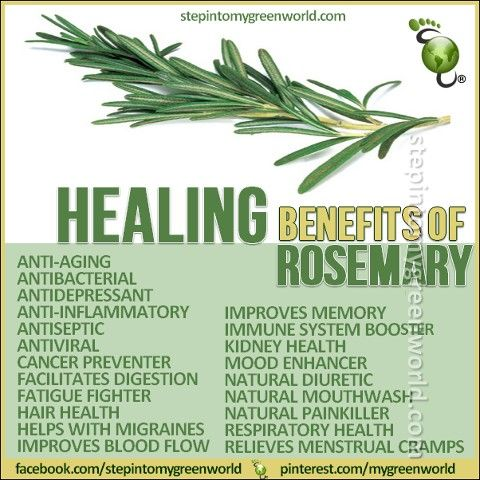 How to Make The Ultimate Rosemary Immunity Booster Oil