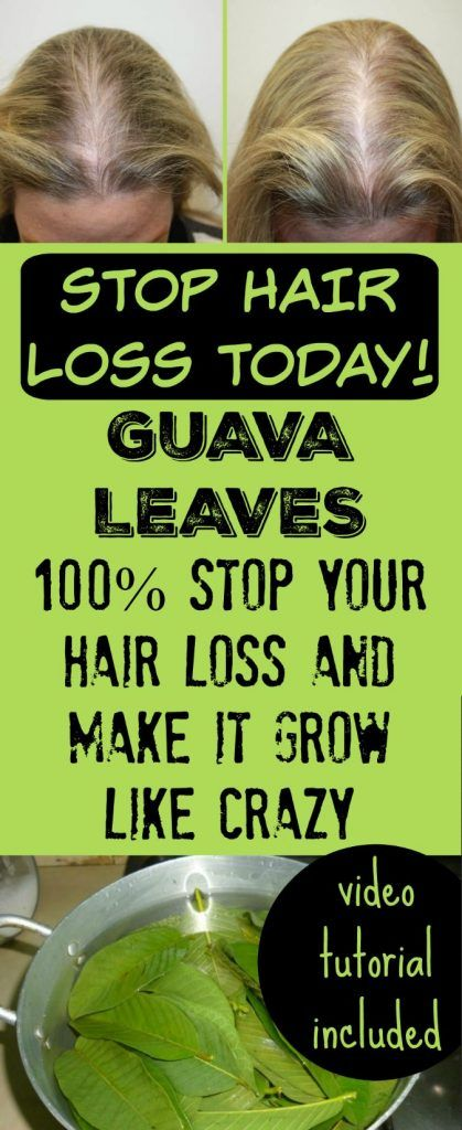 Guava Leaves Can Stop Your Hair loss and Make It Grow Like Crazy