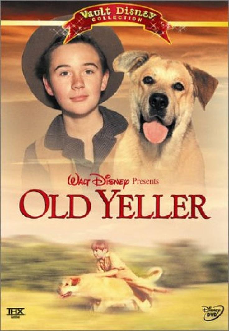 the best old yeller ideas old dogs film old yeller