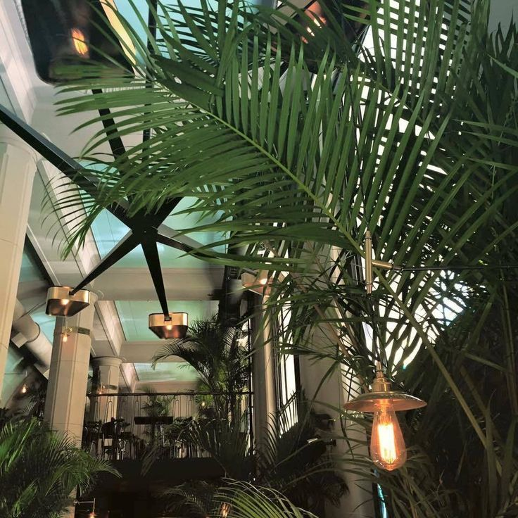 Palmier, amazing restaurant space, Warszawa