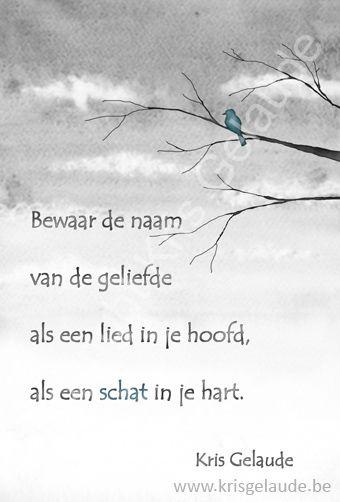 Kris Gelaude - Bewaar de naam - Illustratie Joke Eycken