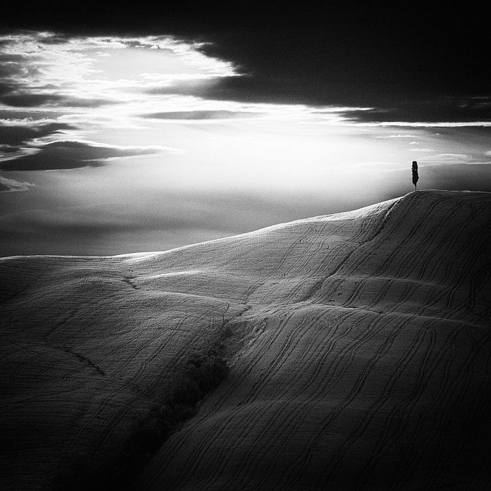 Alone by Sebastian Prioteasa on Art Limited
