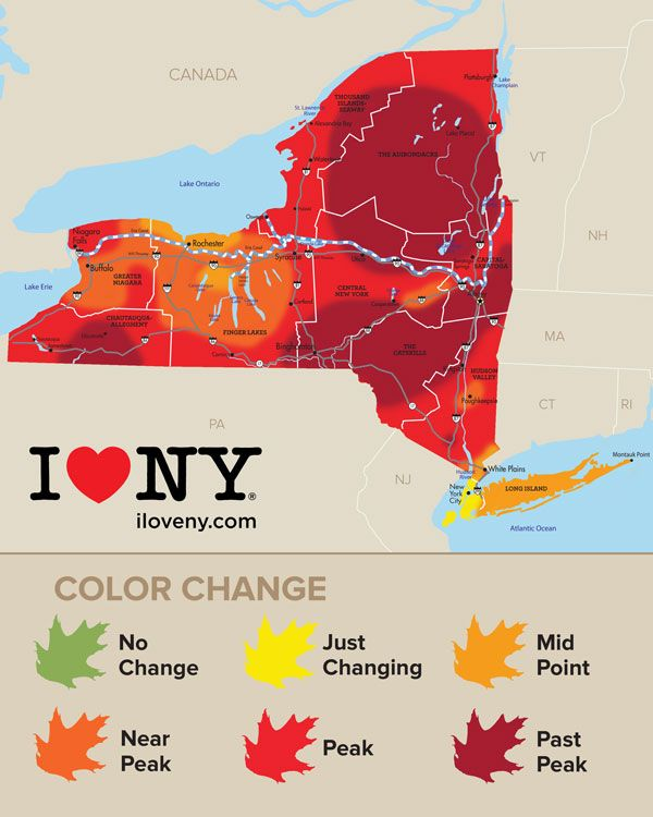 Foliage Map New York 2017.Check Out This Map Of Where Fall Leaves Are Changing In New