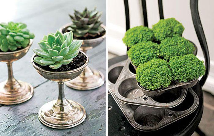 Винтажные подсвечники и формы для кексов в качестве горшков для домашних растений.