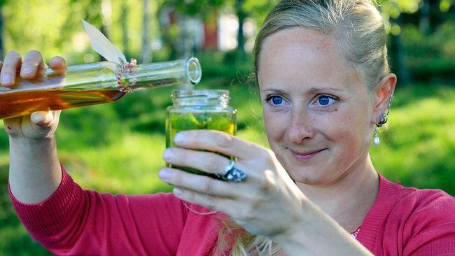 Alexandra De Paoli, örtterapeut, gör björkolja som är bra mot muskel och ledvärk. SVT