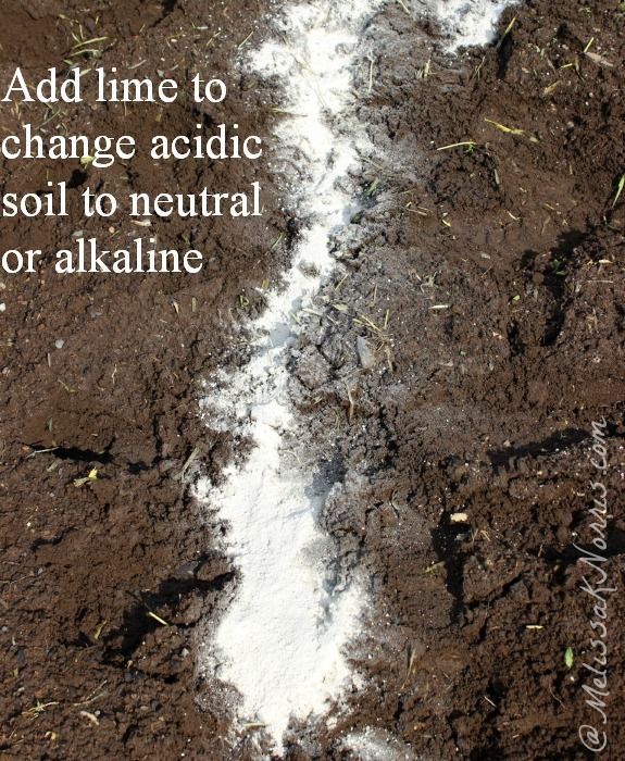 Change the ph level of your soil from acidic to alkaline - What is lime used for in gardening ...