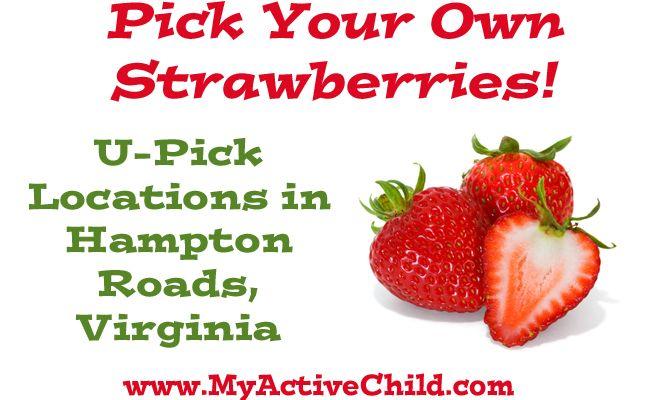 Virginia Beach Fruit Picking