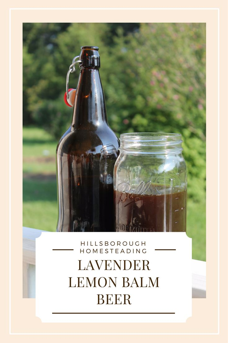 Try your hand at brewing herbal beer! Combine the medicinal properties of lavender and lemon balm with the probiotic benefits of fermentation with this delicious summertime herbal beer. | Hillsborough Homesteading