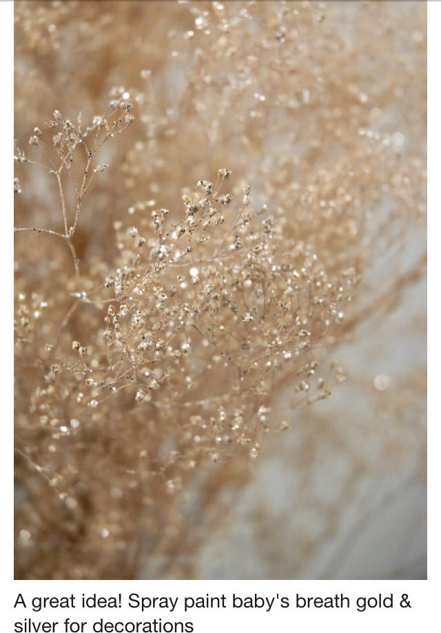 Gold and glitter spray painted babys breath diy cool