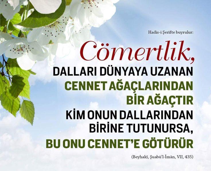 Cömertlik  #cömert #dünya #ağaç #cennet #fedakar #hadisler #hayırlıcumalar #türkiye #ilmisuffa