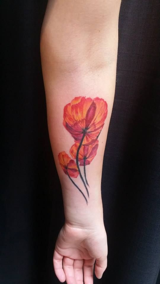 Colourful Poppies Tattoo