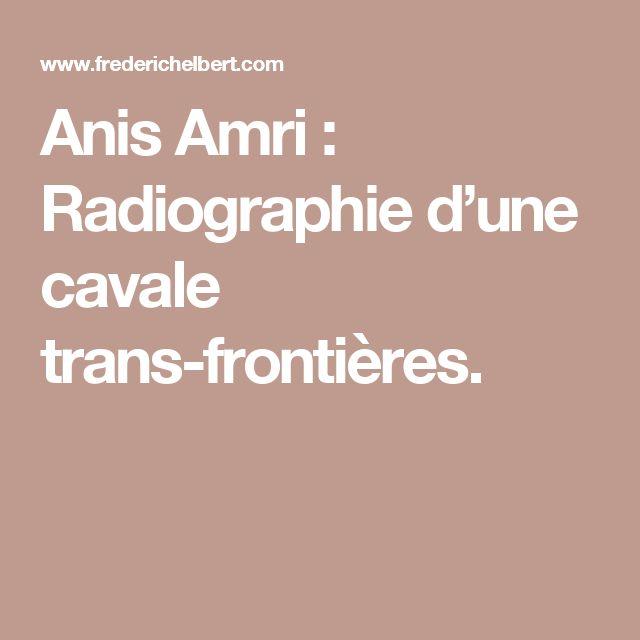 Anis Amri : Radiographie d'une cavale trans-frontières.