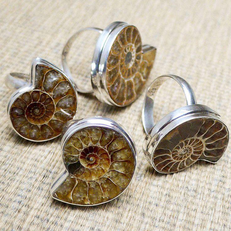 shell rings...nice..
