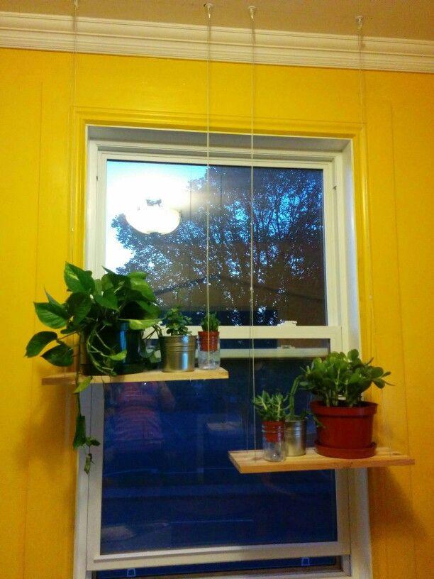 Windows shelf
