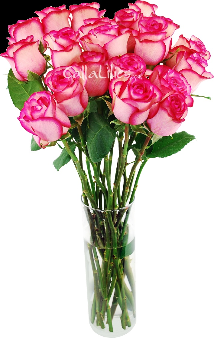 Home bulk roses peach roses - Order Beautiful Bulk Flowers At The Best Prices Our Fresh Roses Carousel Are Gorgeous