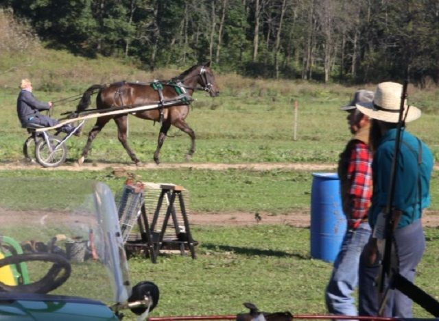 Amish The Best Preppers In Case Of SHTF: 5 Lost Survival Lessons I Learned from the Amish