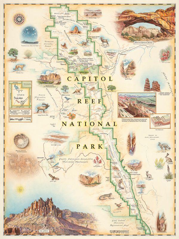 Best Xplore The Maps Images On Pinterest Watercolor Map - Landscape map of usa