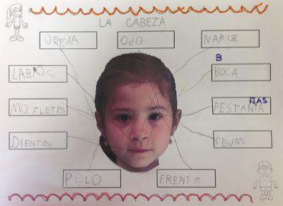 LA CLASE DE MIREN: mis experiencias en el aula: MI CUERPO: MI CABEZA
