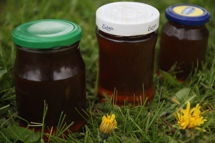 Vyzkoušejte pampeliškový med, ideální na přípravu právě teď, pampeliška brzy odkvete.