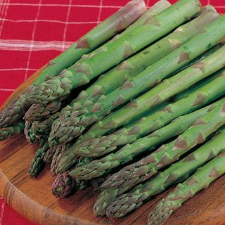 asparagus...going to try this from seed this year.
