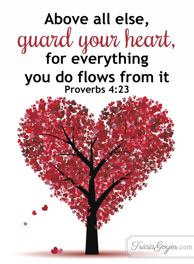 """Proverbs 4:23 """"Above all else, guard your heart, for everything you do flows from it.""""m"""
