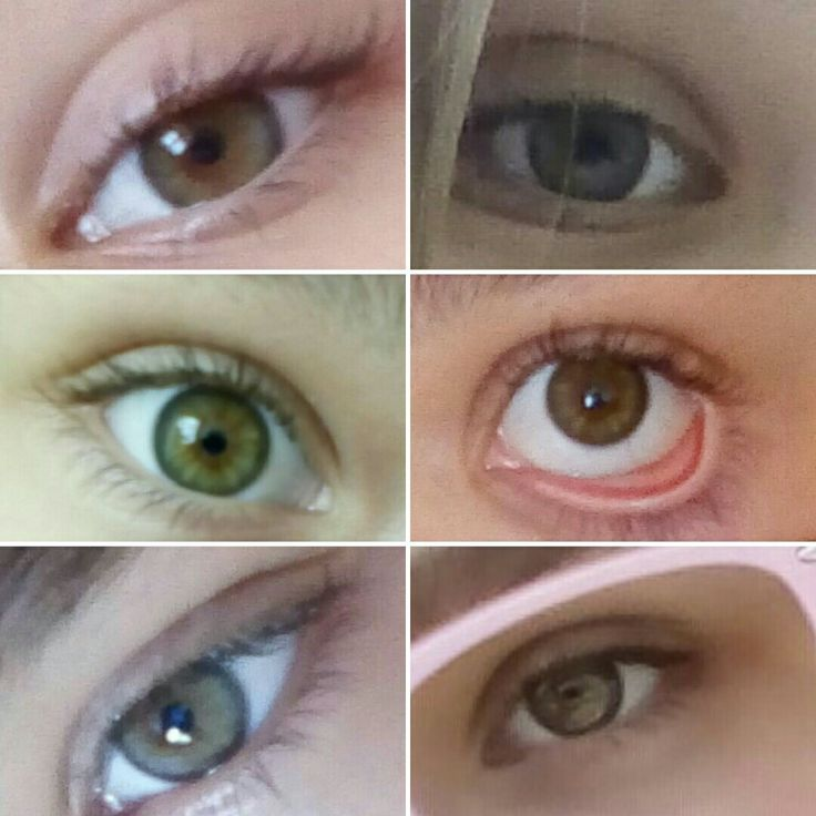 Мои глаза хамелеоны