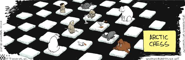 Arctic Chess compliments of global climate change.