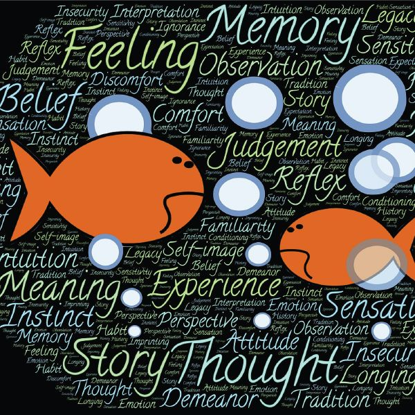 holistic learning theory The holistic learning model (dawson, 2011) provides a framework to understand learning and behaviour the model defines six key variables for learning attention, motivation, emotion, memory, physiology & environment, with their individual determinants extruded these variables exhibit a multitude of interactions which occur both simultaneously and continuously.