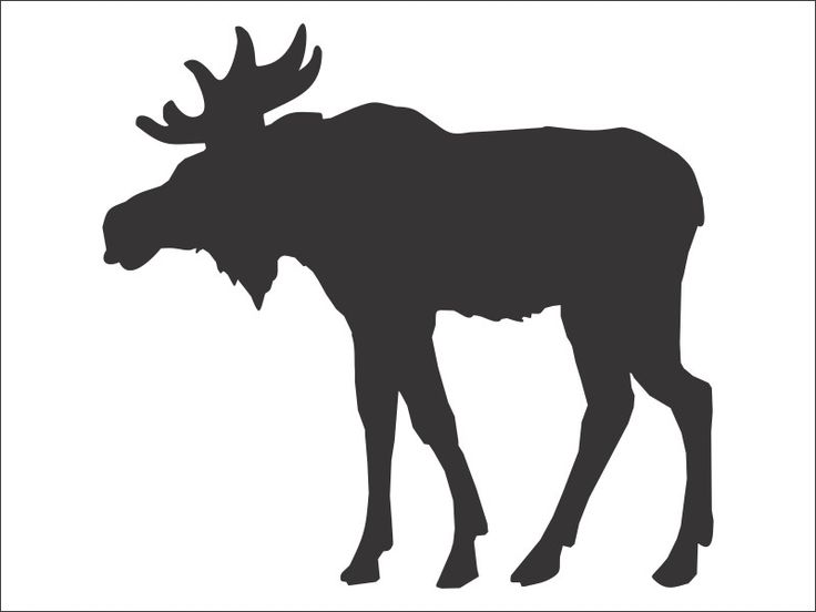 Free Wood Burning Stencils Moose Stencil Board 2