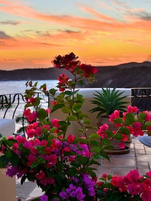 Sunset at Las Palmas resort... see more: http://roadslesstraveled.us/las-palmas-huatulco-playa-violin-mexico-sail-blog/ A romantic resort perfect for a wedding or honeymoon. We loved it there!! #travel #vacation