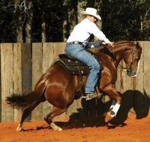 body control for the barrel horse with Clinton Anderson