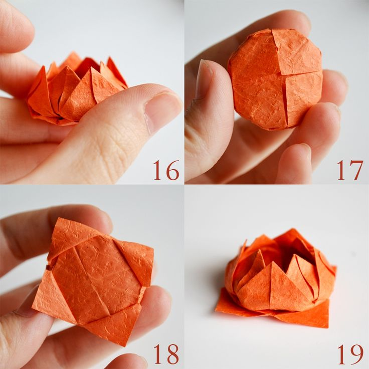 Step by step origami lotus flower tutorial information for How to make a lotus with paper