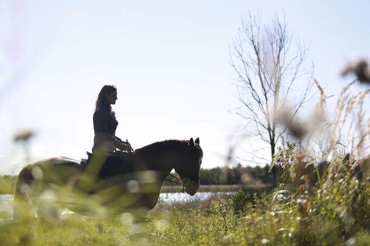 Gymnastiseren op buitenrit, zo houd je je paard soepel en fit op een leuke manier. – PonyTales