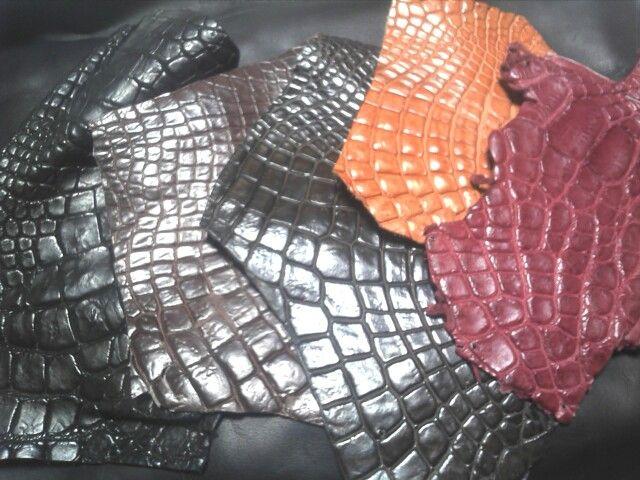 #Exotic Leather #Crocodile