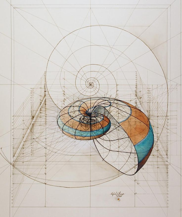 Architectural Renderings of Life Drawn with Pencil and Pen by Rafael Araujo