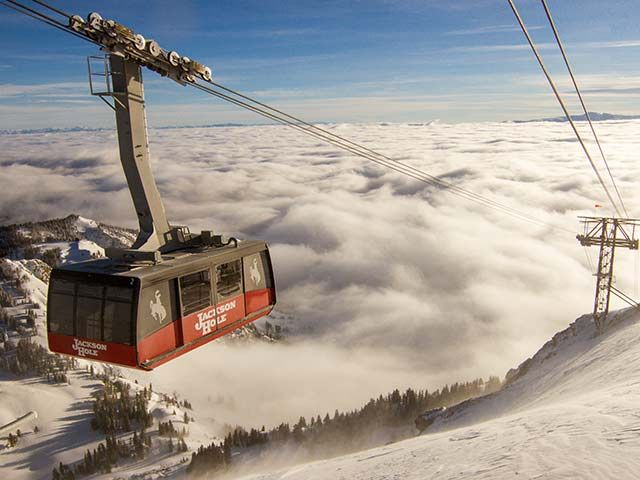 """The tram is the icon of Jackson Hole. """"Big Red"""" as many refer to it whisks you up over 4,000 vertical feet in just 12 minutes. There is great access to great hiking, climbing, paragliding, and of course waffles."""