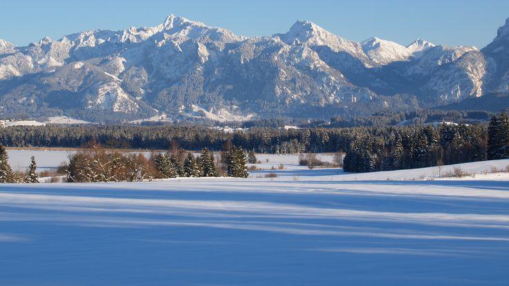 Ein toller #Winterausflug mitsamt #Schlittenfahrt führt zur urigen #SaloberAlm, die sich oberhalb des geheimnisvollen #Alatsees befindet.   http://www.dreimaederlhaus.de/de/blog/ausflugsziele/schlittenfahren-rund-um-weissensee.html