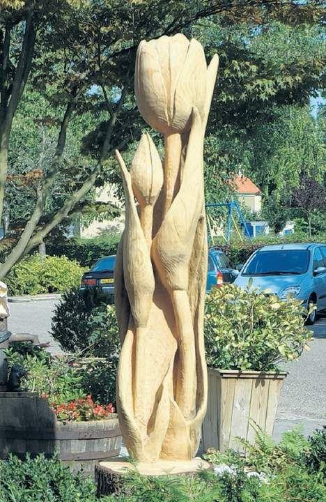 Kunst met een kettingzaag - Tuinrubriek - TROUW