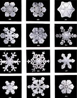 Masaru Emoto's The Secret Life of Water