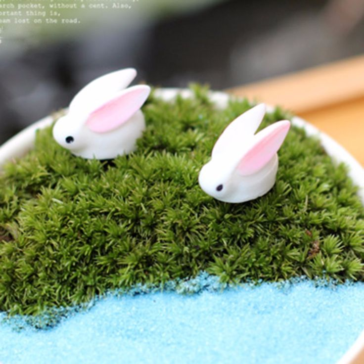 Micro Landscape World Funny Bunny Garden Ornaments Mini Bunny Potted Home Garden Bonsai Micro Landscape DIY Bonsai Decor #clothing,#shoes,#jewelry,#women,#men,#hats,#watches,#belts,#fashion,#style