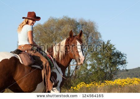 Horse Human Stock foto´s, Horse Human Stock fotografie, Horse Human Stock afbeeldingen : Shutterstock.com
